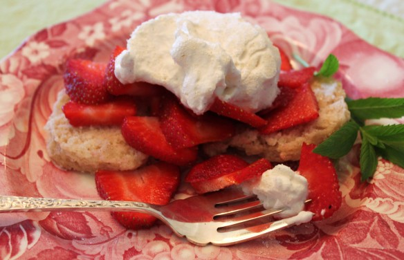 Blog strawberry shortcake photo