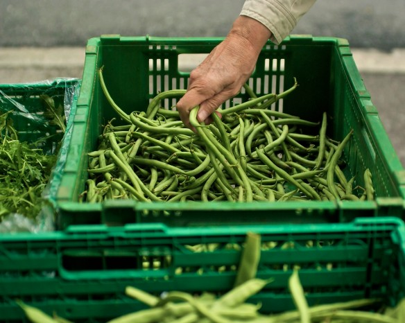 Blog LfB1 beans