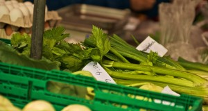 Blog LfB1 celery